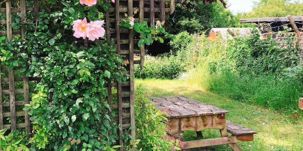 Genesis Garden Picture, Garden Bench
